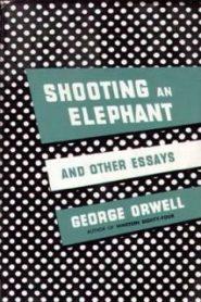 Как я стрелял в слона