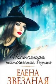 Московский ведьминский таможенно-пропускной пункт