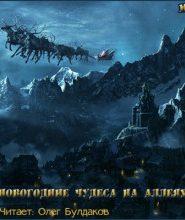 Темные аллеи — Новогодние чудеса на аллеях