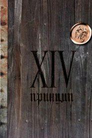 XIV принцип